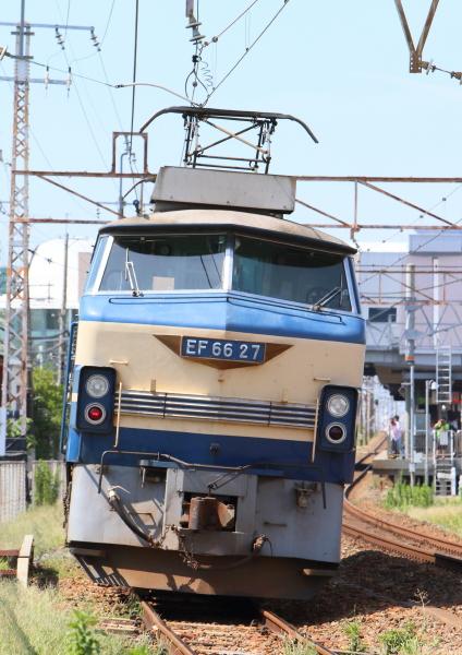 AM9P7562_1.jpg
