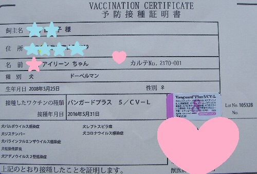 20160531ワクチン接種①-1