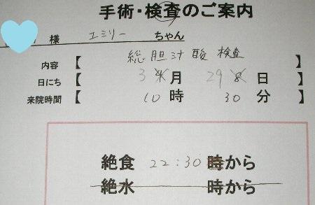 総胆汁酸検査日程①
