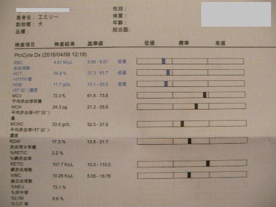 20160408血液検査③-1