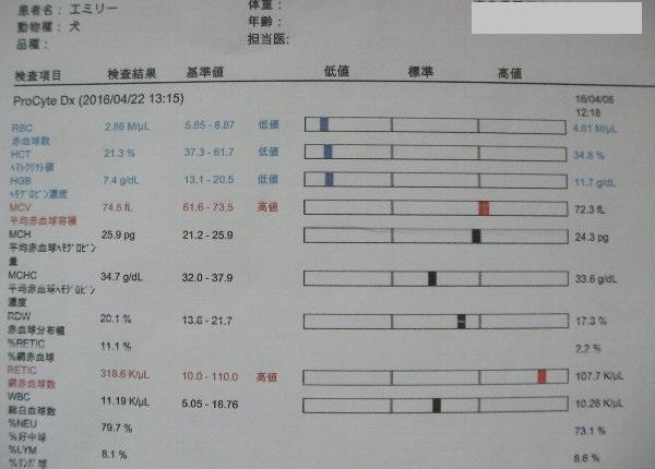 201604221315血液検査①-1