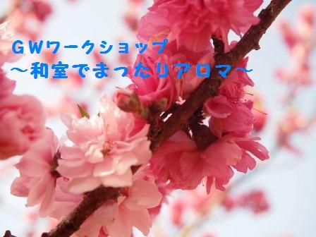 P5084448 - コピー