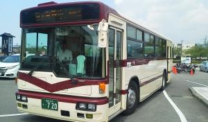 busF1170014.jpg