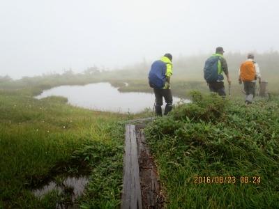 平ヶ岳への池塘と木道