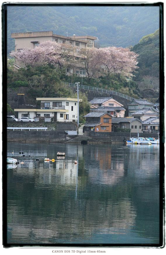 三重県南伊勢町の廃校1603miehaikou.jpg