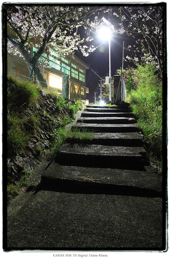 廃校の夜桜1604haikou0307.jpg