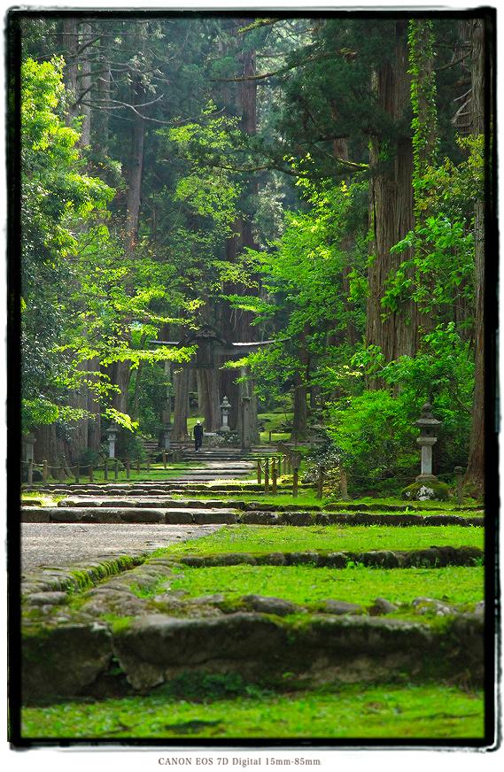 平泉寺白山神社1605gw0220.jpg