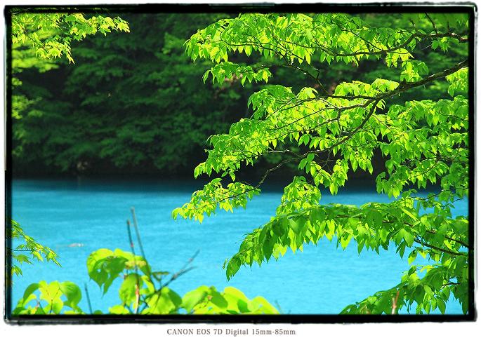 1605shizuoka0504.jpg