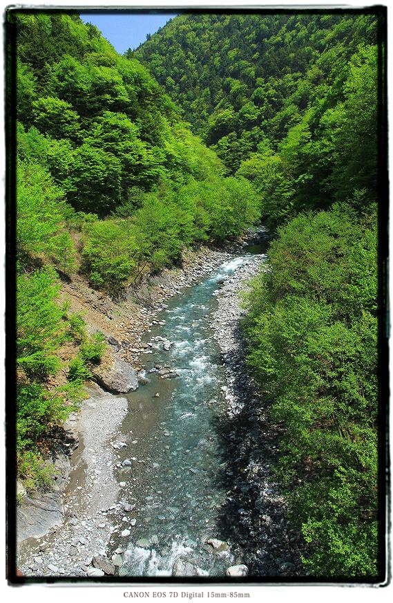 1605shizuoka0511.jpg