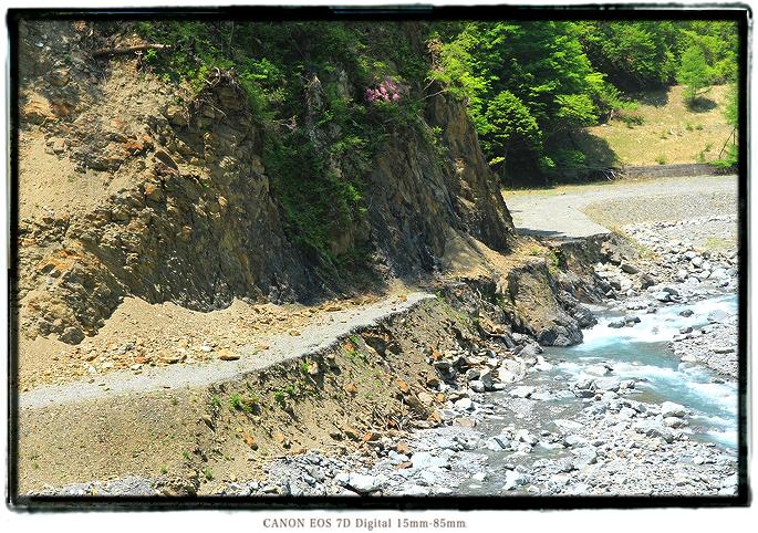 1605shizuoka0523.jpg