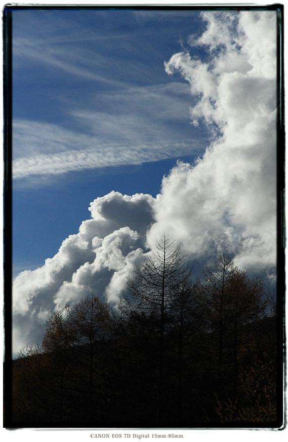201111nagano03.jpg