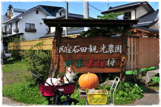 軽井沢43