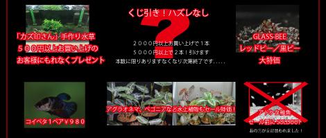4th-sale_11.jpg