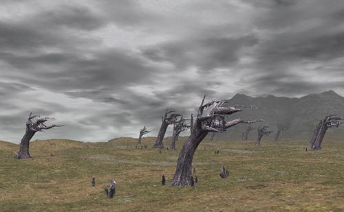 木の倒れ方と残り方に注目