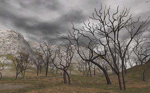 山に囲まれたところでは細い木も残っている