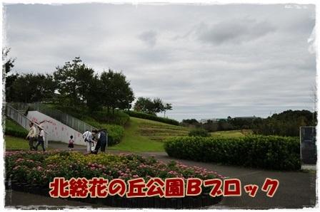 花の丘公園Bブロック