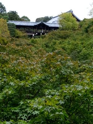 東福寺通天橋1611