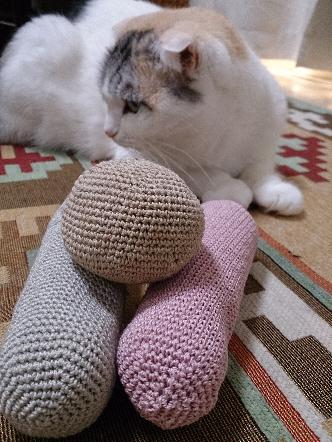 猫1608010003(1)