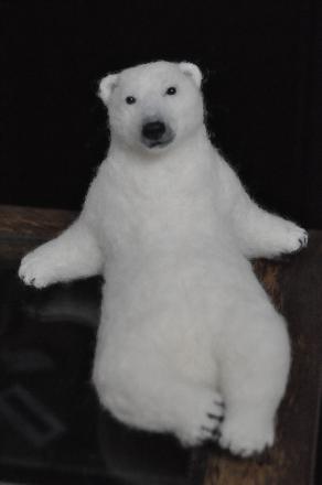 白クマ1608060001(1)