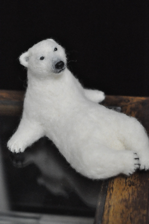 白クマ1608060015(1)