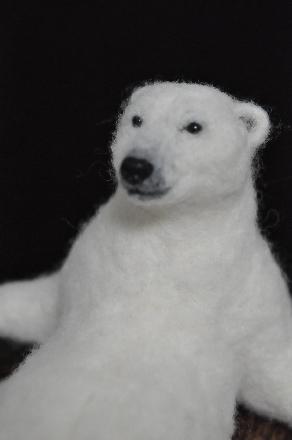 白クマ1608060017(1)