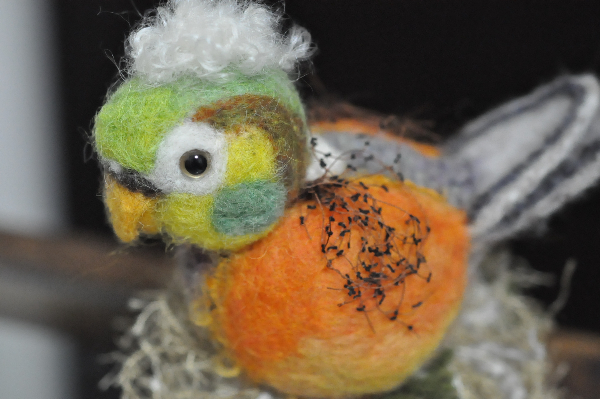 鳥さん1610280051(1)