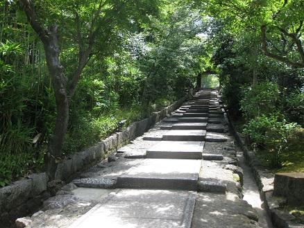 高台寺20160618 (1)