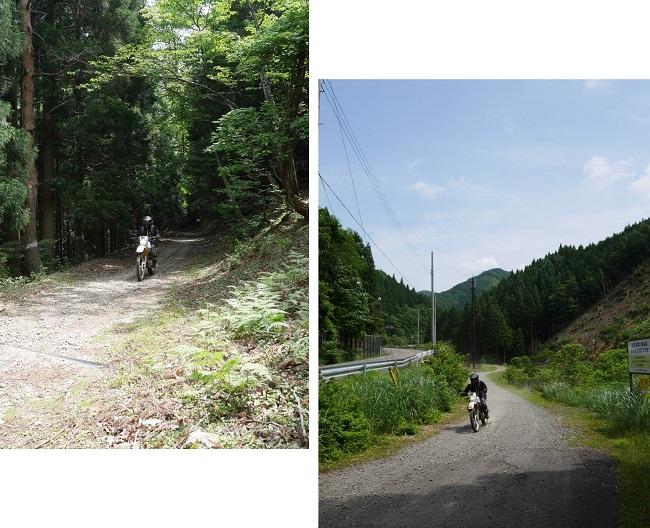 綾部方面林道ツーリング1606-11-015b