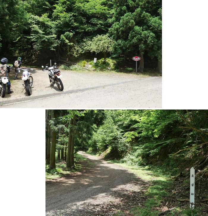 綾部方面林道ツーリング1606-11-023b