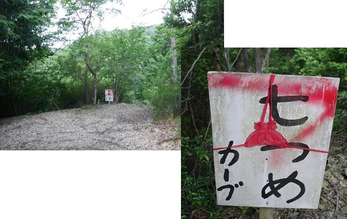 茶呑峠魚谷峠1606-035b