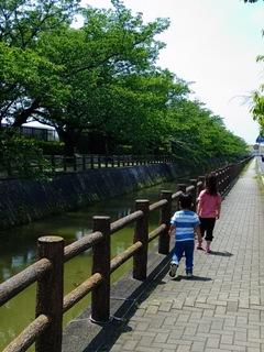 ブログ2 0516公園 (1)