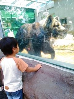 ブログ2 0613東武動物公園 (2)