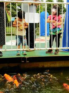 ブログ2 0613東武動物公園 (3)