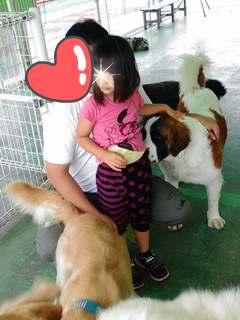 ブログ2 0919犬 (4)