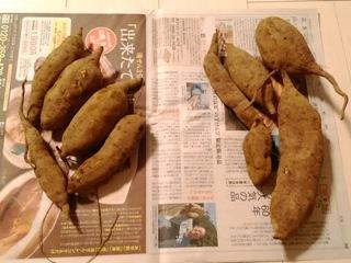 ブログ2 1015お弁当 (2)