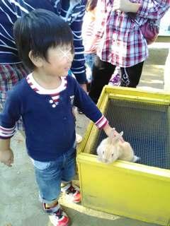 ブログ2 1016動物園