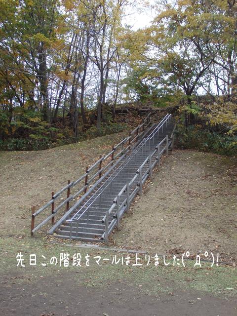 kaidan_20161025211319285.jpg