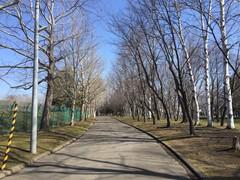 s-IMG_5519.jpg