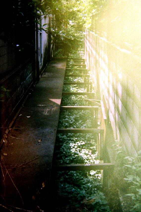 細い路地に光が降り注ぐ