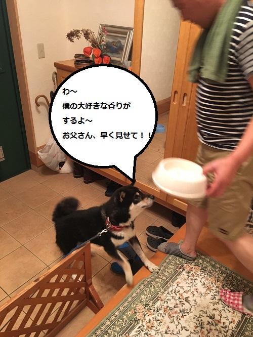 まるちゃん2016082502