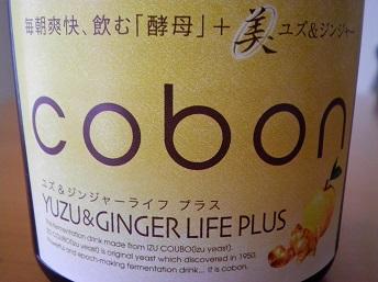 cobon2-2.jpg