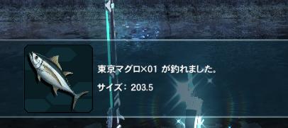 13240