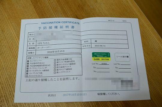 DSC_3229_2016101711013450a.jpg