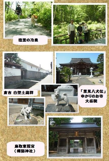 コルクボード ・鳥取へ3