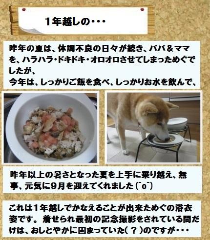 コルクボ―ド浴衣1