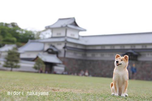 IMG_4023kanazawa