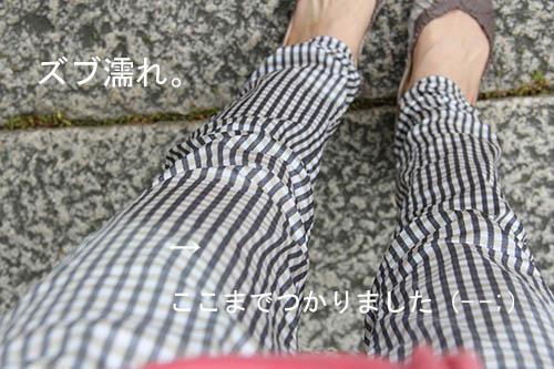 IMG_3949zubunure.jpg