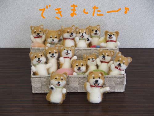 P8261809shiba.jpg