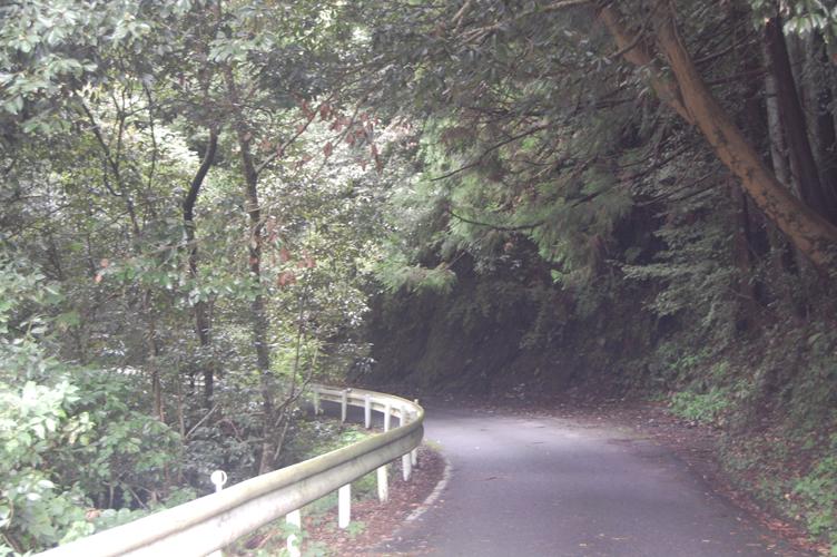 ooigawa_11.jpg