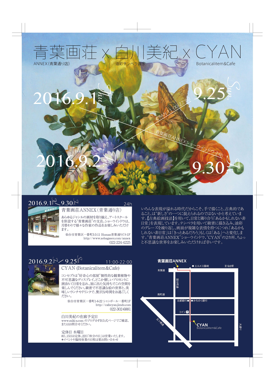 shirakawa_dm0809.jpg